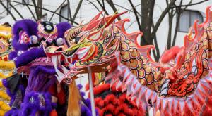 dragone cinese capodanno 2015